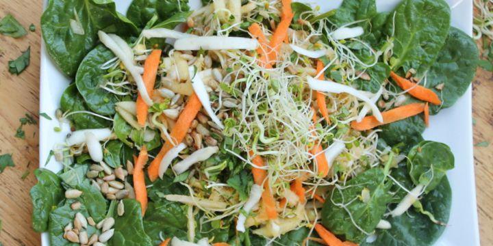 Frühlingssalat mit Sprossen