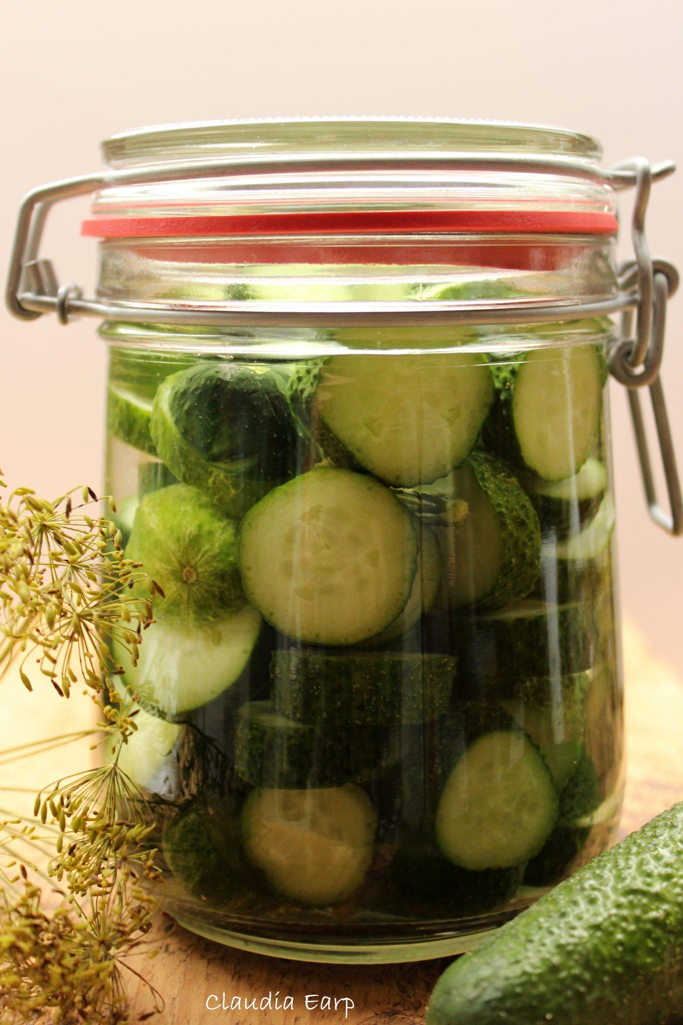 Kinderleicht - Gemüse fermentieren