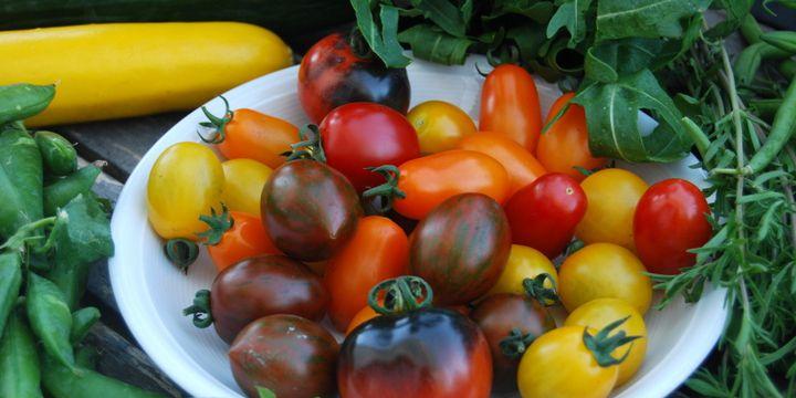 Serie: Im Rhythmus der Jahreszeiten leben und essen – Sommer